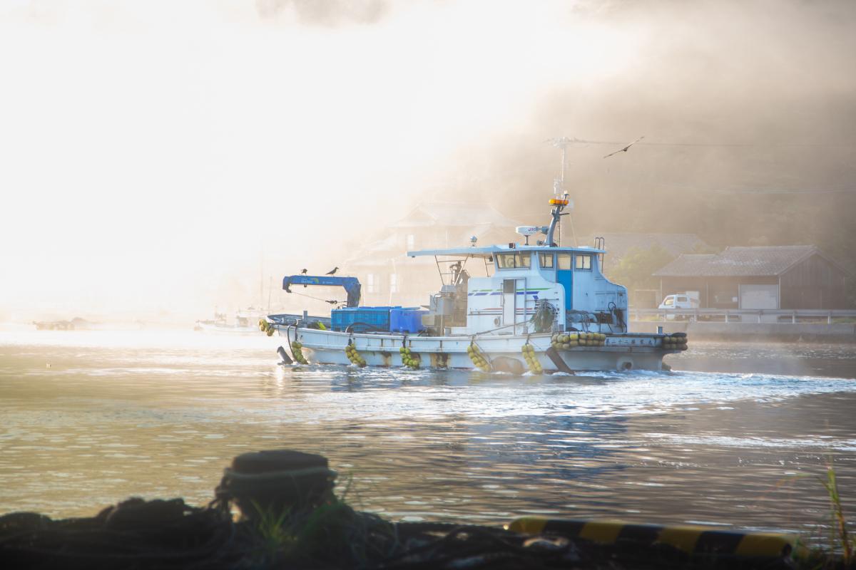 マグロ養殖のための船