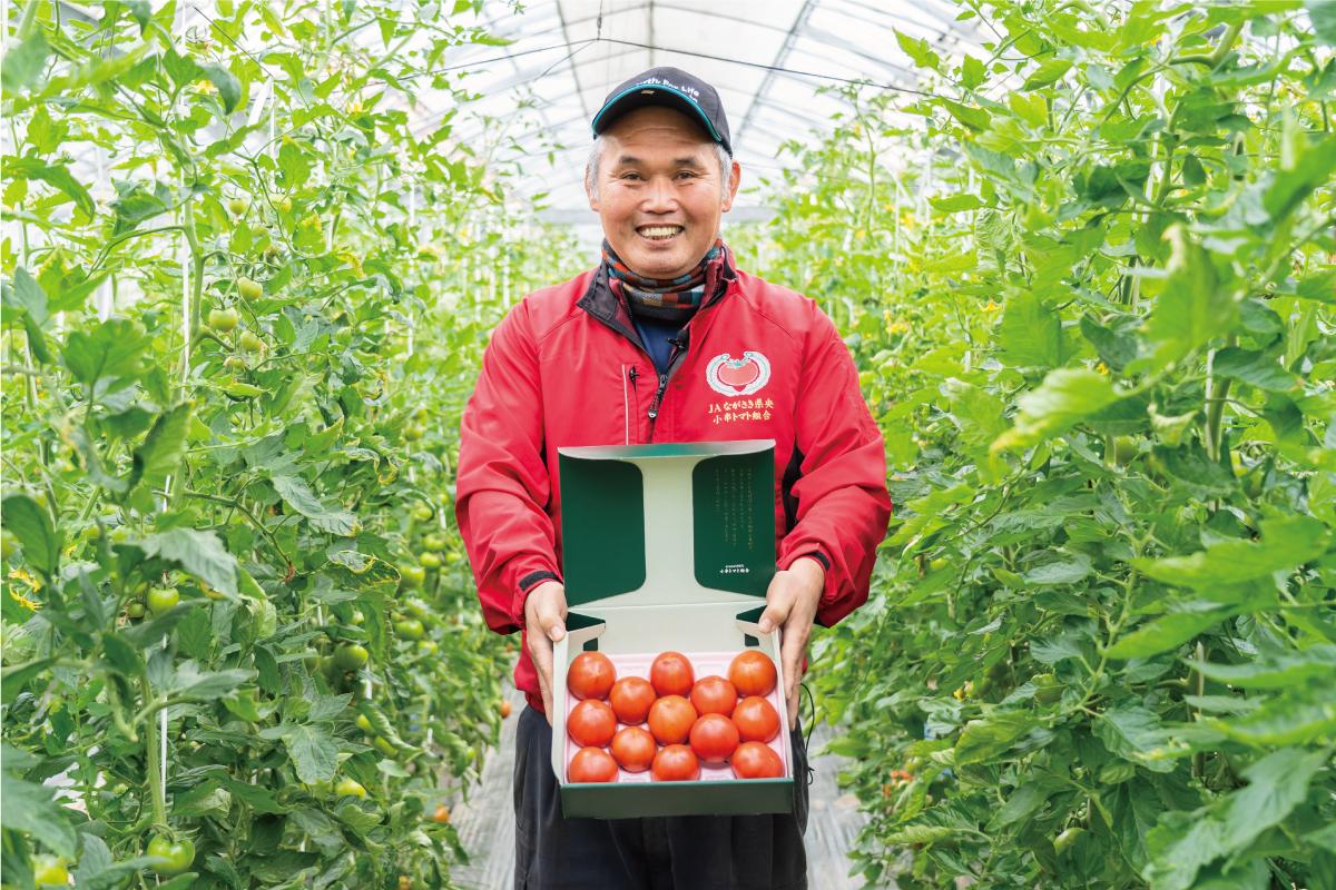 小串トマト農家 一瀬さん